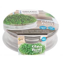glazen bowl