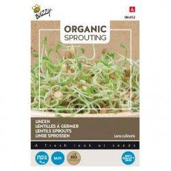 Organic Sprouting Linzen