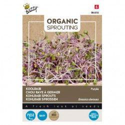 Organic Sprouting Koolrabi...